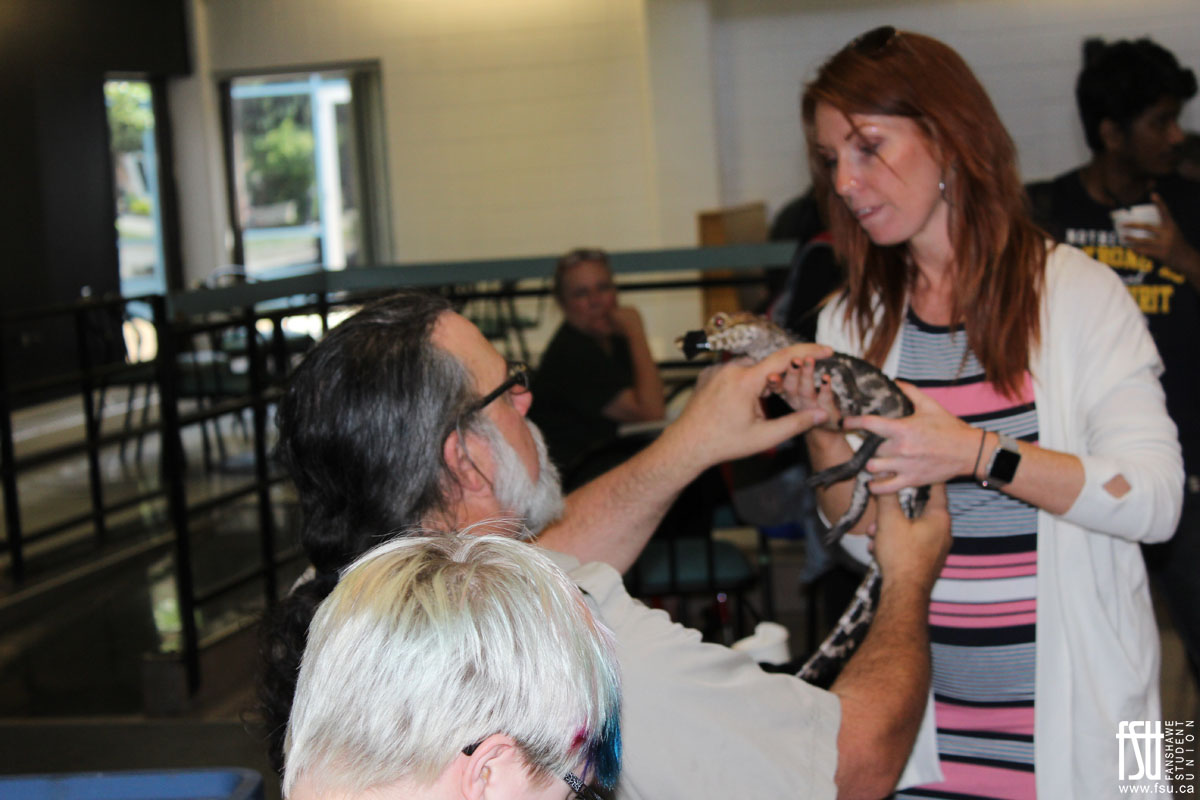 Strawberry Social and Little Ray's Reptiles